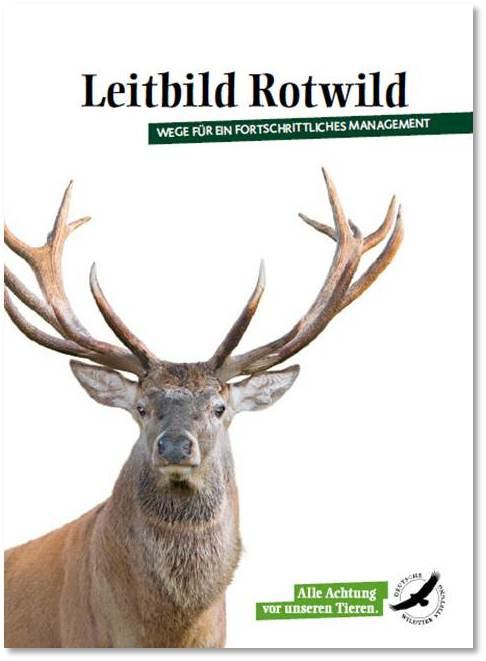 Cover Leitbild Rotwild