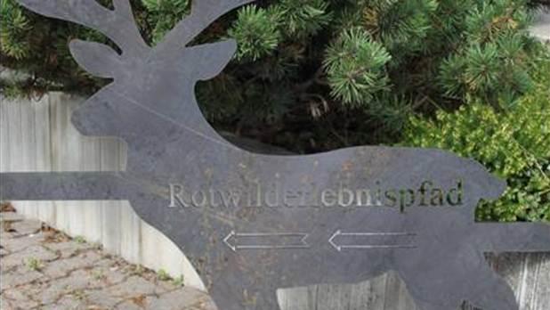 Beitragsbild Rotwilderlebnispfad Schönbuch