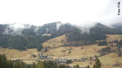 Landesweite Wildruhezonen geplant