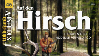 Beitragsbild WuH Auf Den Hirsch