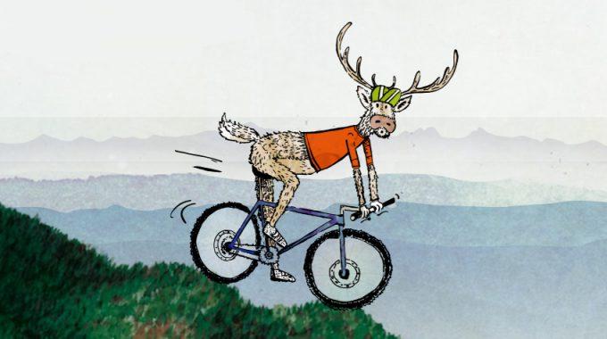 Mountain-Biken Im Rotwildrevier