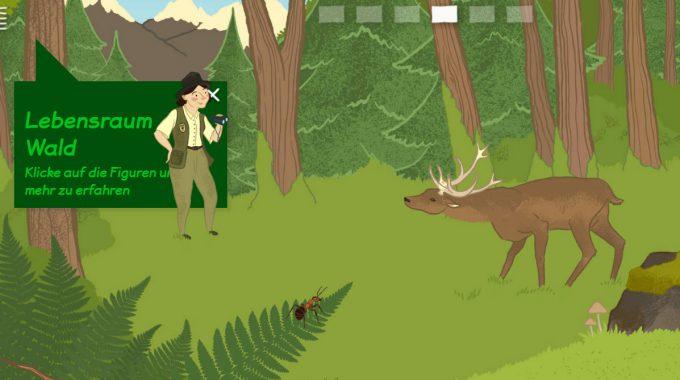 Neues Angebot Für Große Und Kleine Wildtierfreunde